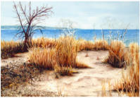 Erie Beach - sold